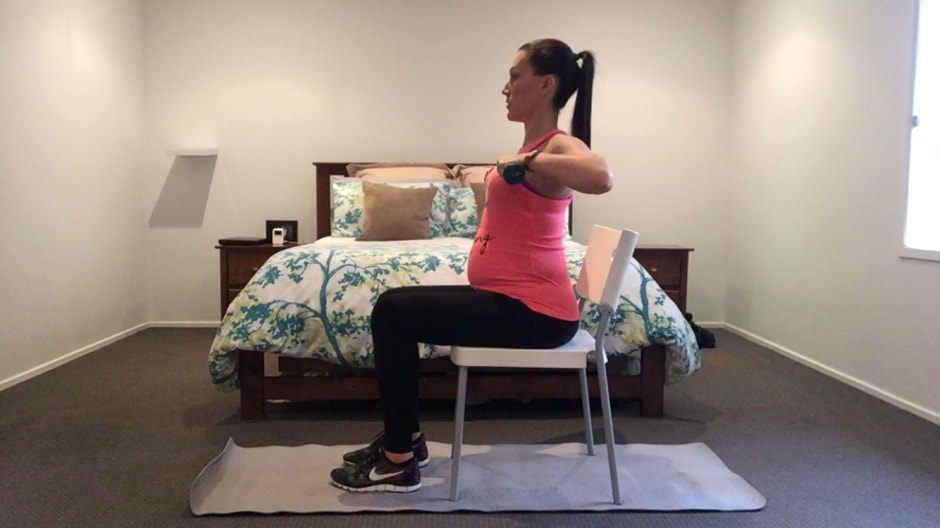 Chest Press and Seated Row
